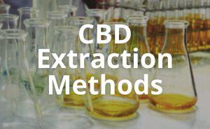 CBD Extraction Methods